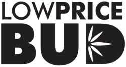 Buy 2OZ BUBBA DEAL online Canada
