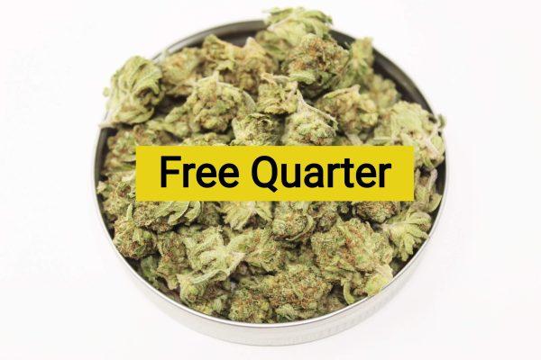 Buy Free Quarter online Canada