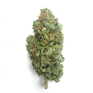 Buy BLUE DREAM online Canada
