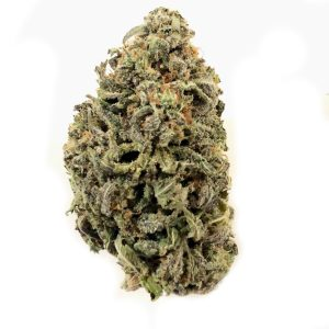 Buy BLUEBERRY NUKEN online Canada