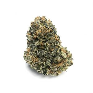 Buy FORUM COOKIES (AAAA) MEDIUM-SMALLS online Canada