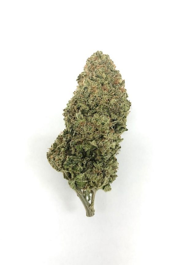 Buy BLUEBERRY AK (AAA) online Canada