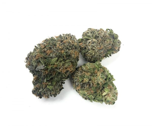 Buy PURPLE DREAM (AAA) online Canada