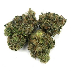 Buy WEST COAST BUBBA BY GASLEAK (AAAA) online Canada