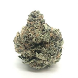 Buy LINDSAY OG 'SMALLS BY GASLEAK' online Canada