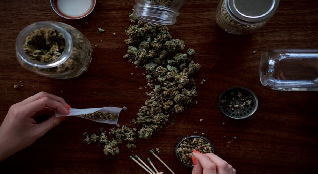 How to Find a Reliable Cannabis Dealer Online?   Low Price Bud